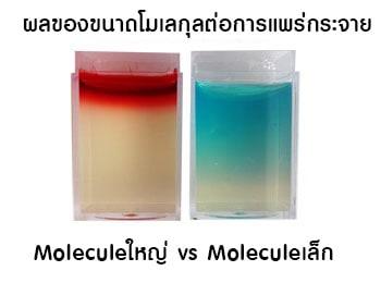 โมเลกุลของโบท็อก