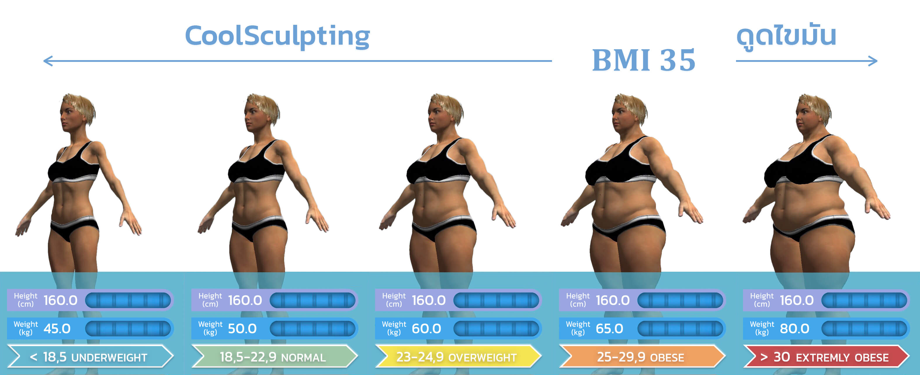 ตารางเปรียบเทียบ BMI