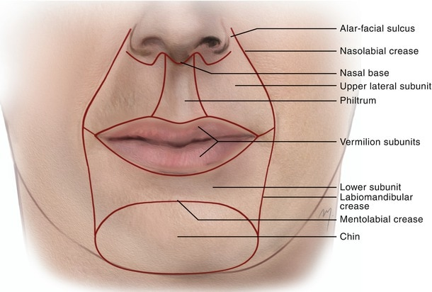 ปรับรูปหน้าให้ได้สัดส่วนด้วยการเติมฟิลเลอร์ปาก